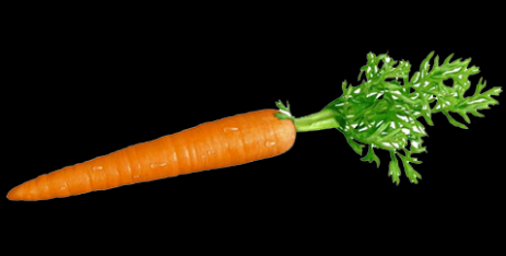 Here's What No One Tells You About Carrot | carrot