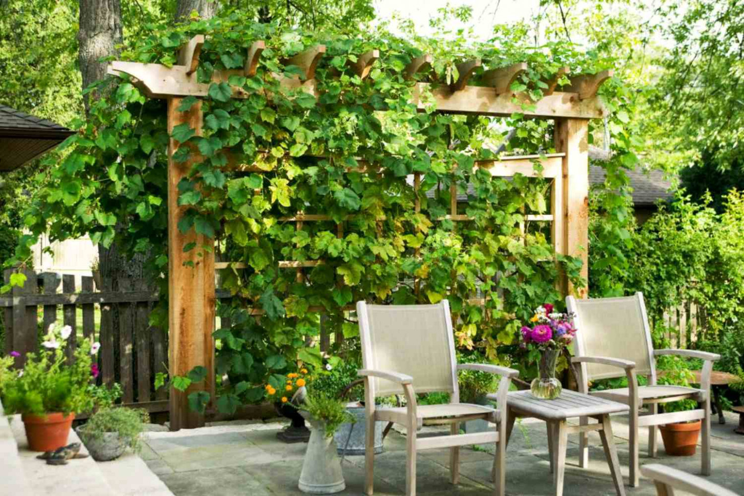 10 Ways To Gain Privacy In Your Yard Carport Screening Ideas