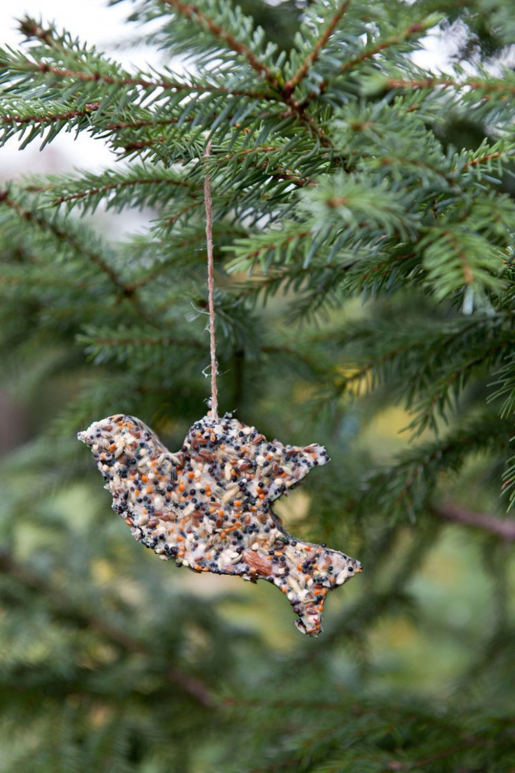 8 Best Outdoor Christmas Decorations DIY Outside ..