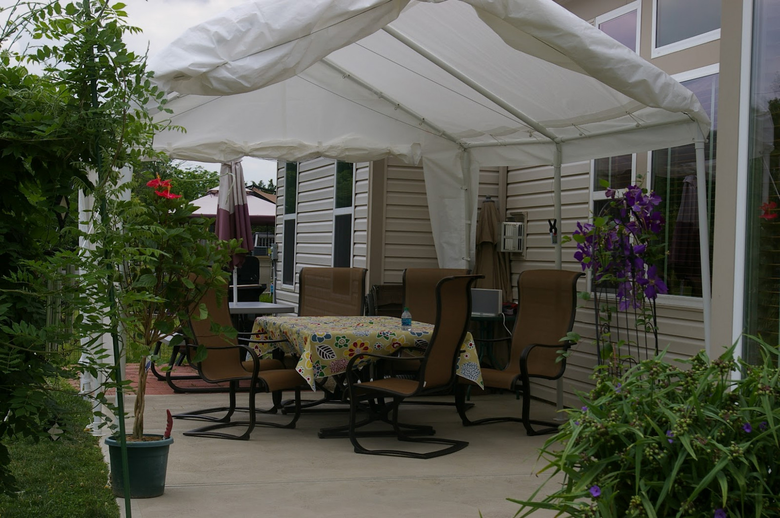 Backyard Canopy Costco : Design Idea And Decor Custom ..