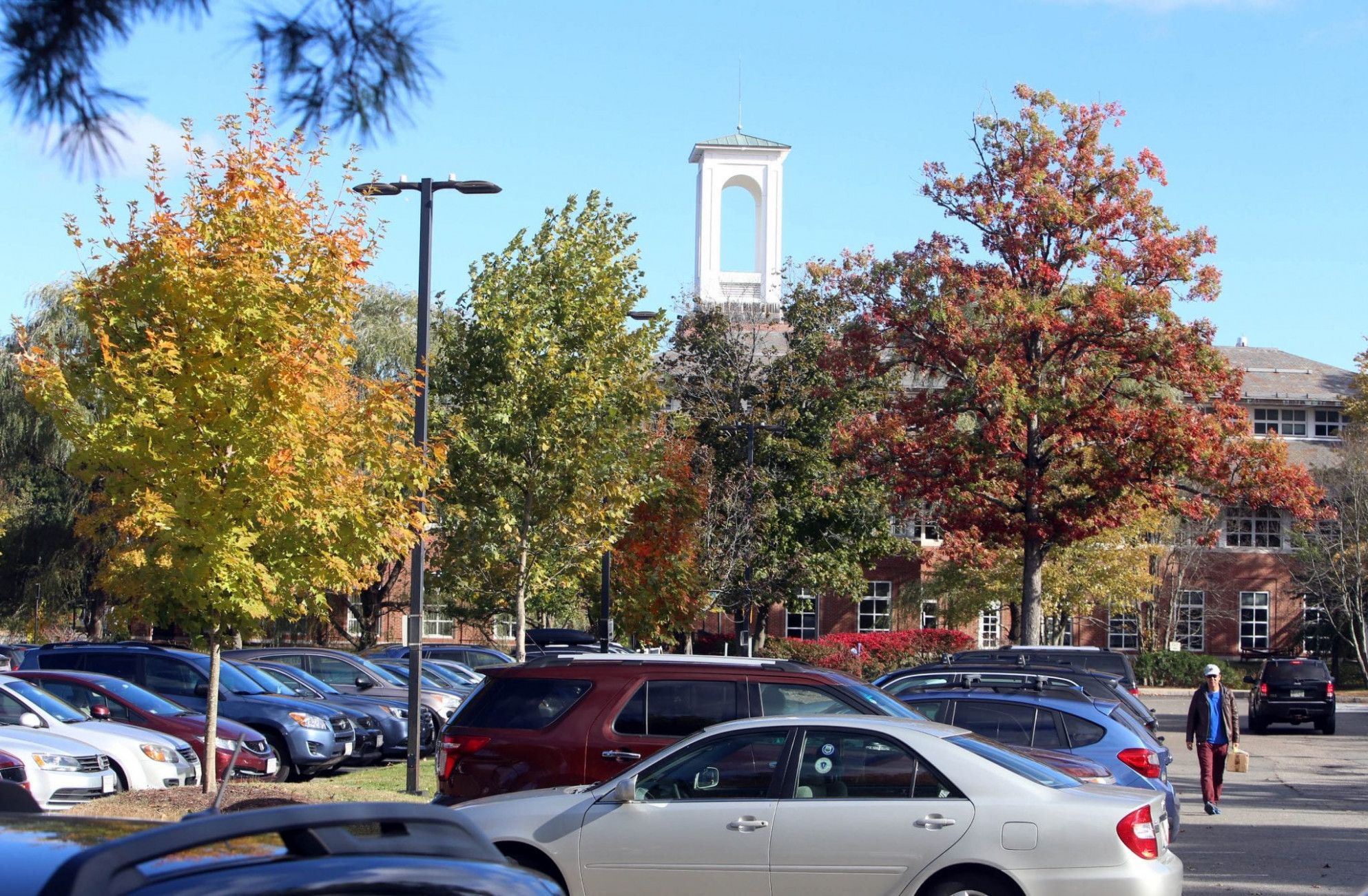 Deja Vu On Library Parking Lot Trees And Solar Carports, But ..