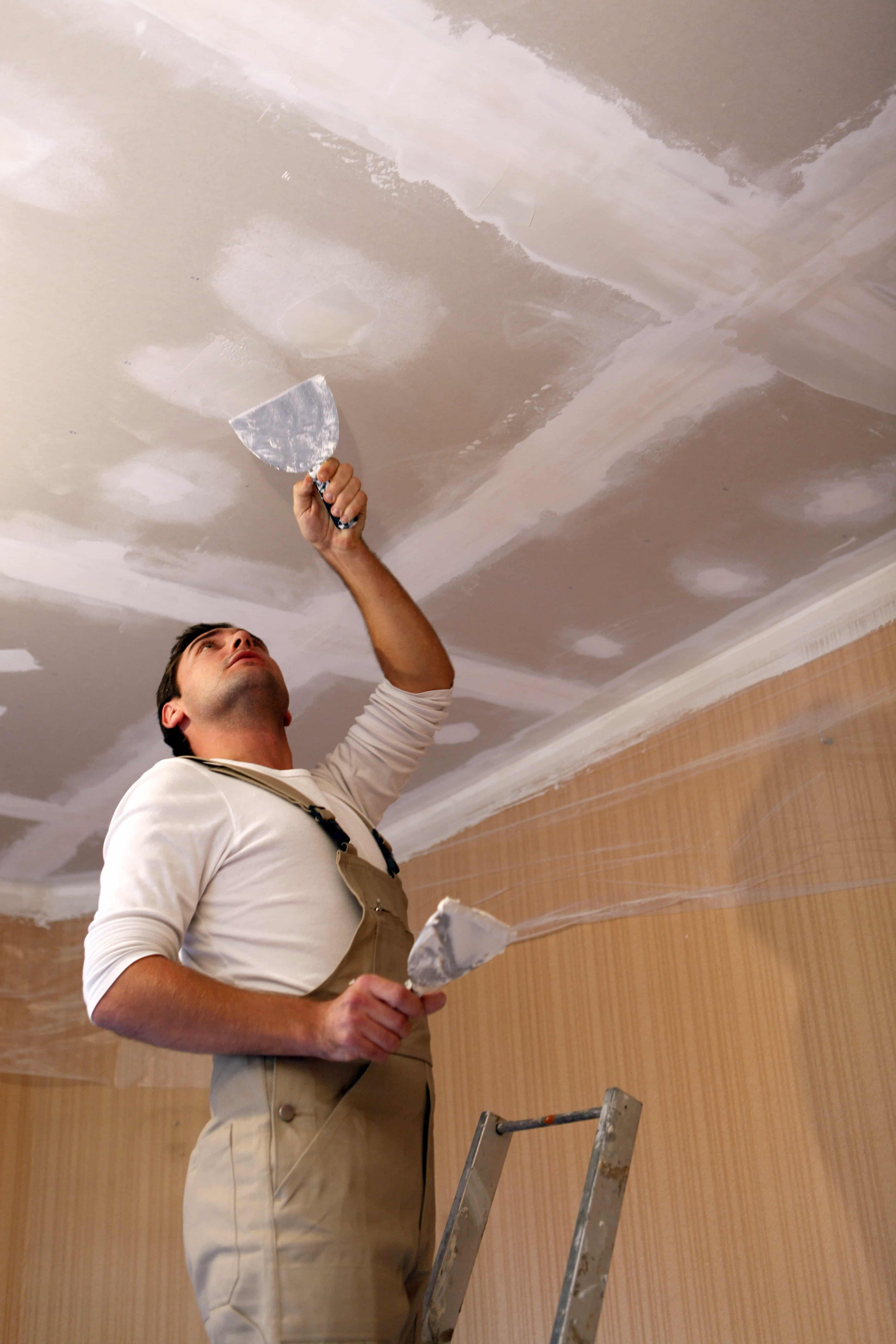 Different Types Of Ceilings HOMEMAKERS Online Roof Sheeting Durban Carports Materials Kzn