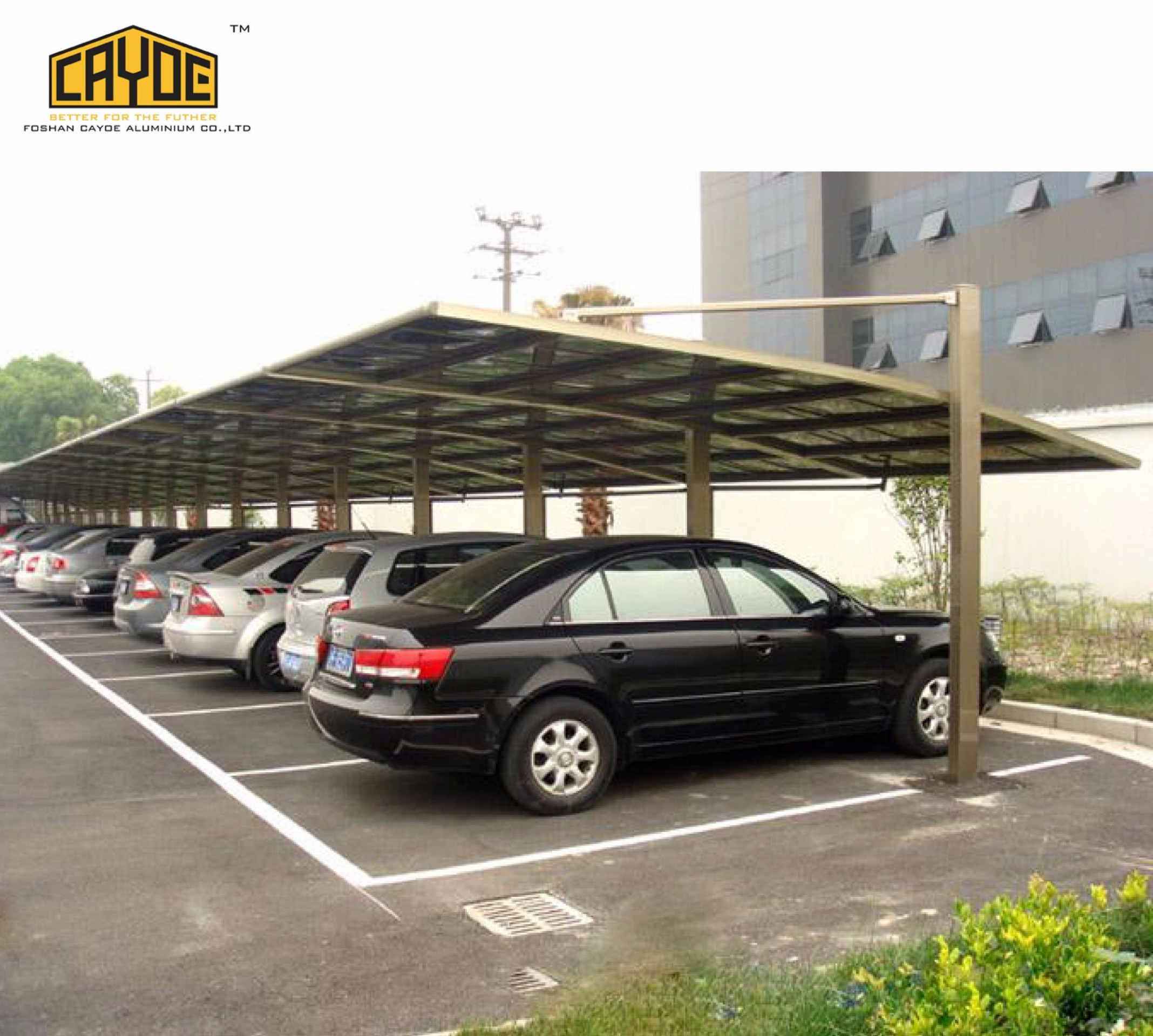 [Hot Item] Modern Design Snow Loading Polycarbonate Aluminum Carport Canopy