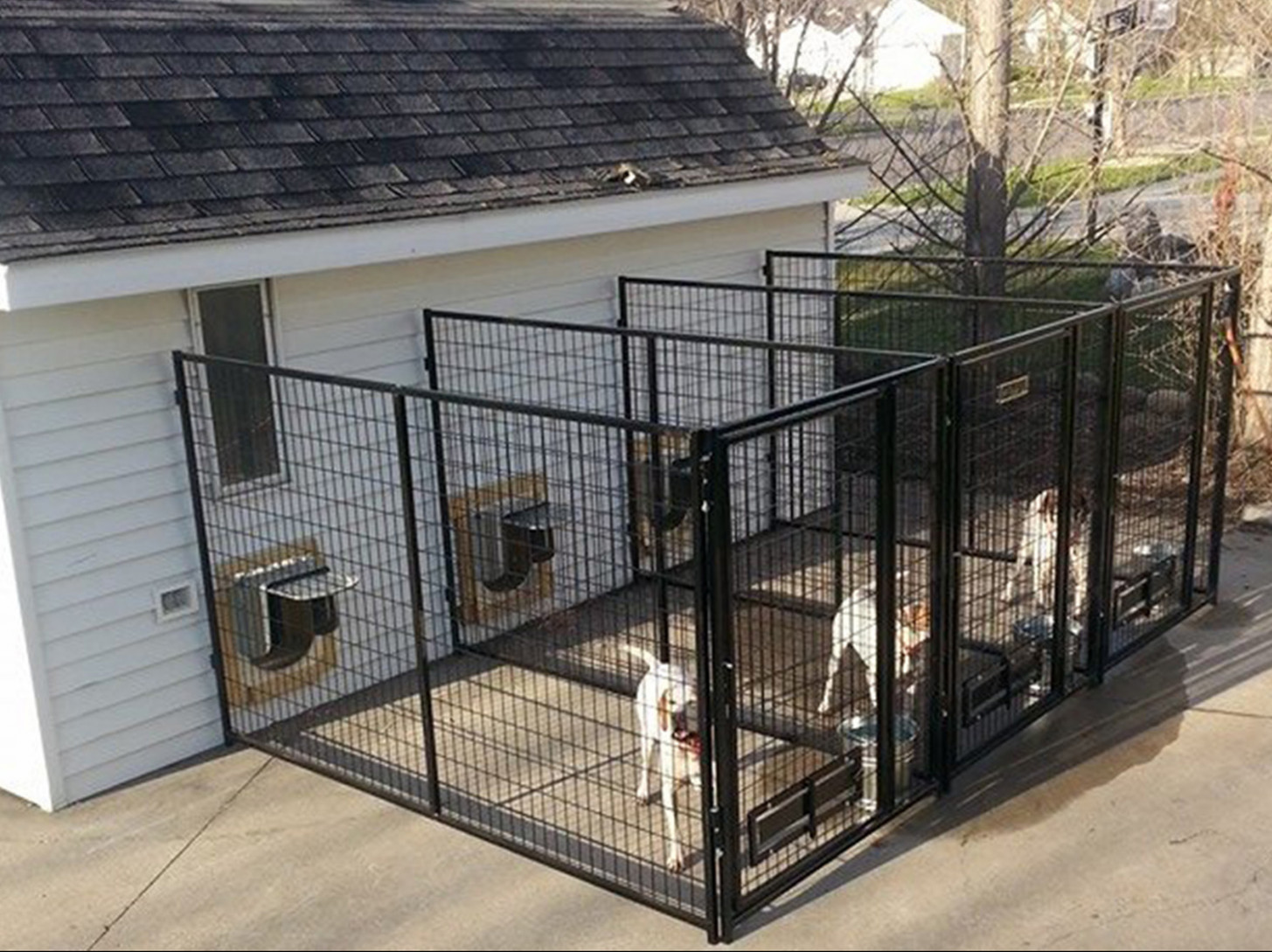 Ideas: Perfect Outdoor Dog Kennel Flooring With ..
