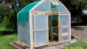 Make A Greenhouse From An Old Carport: 7 Steps (with Pictures) Shed With Carport Ideas