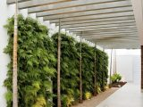 Neat Privacy Screen For A Carport (the Plants). Very ..