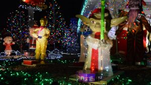 She's Making Sure Pueblo Estates Puts On A Great Christmas ..